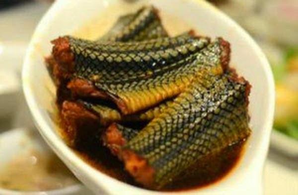 Makanan Ekstrim Yang Dijual di Kota Jogja