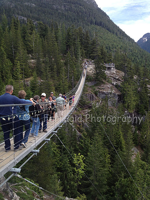 http://with2kidsintow.blogspot.ca/2015/06/how-to-ride-sea-to-sky-gondola-for-only.html