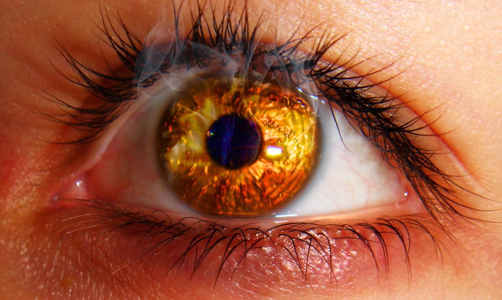Воспалился глаз: причины, что делать и чем лечить 71