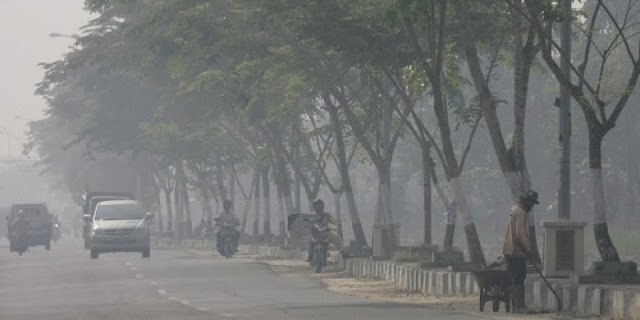 Pembakaran Lahan Riau