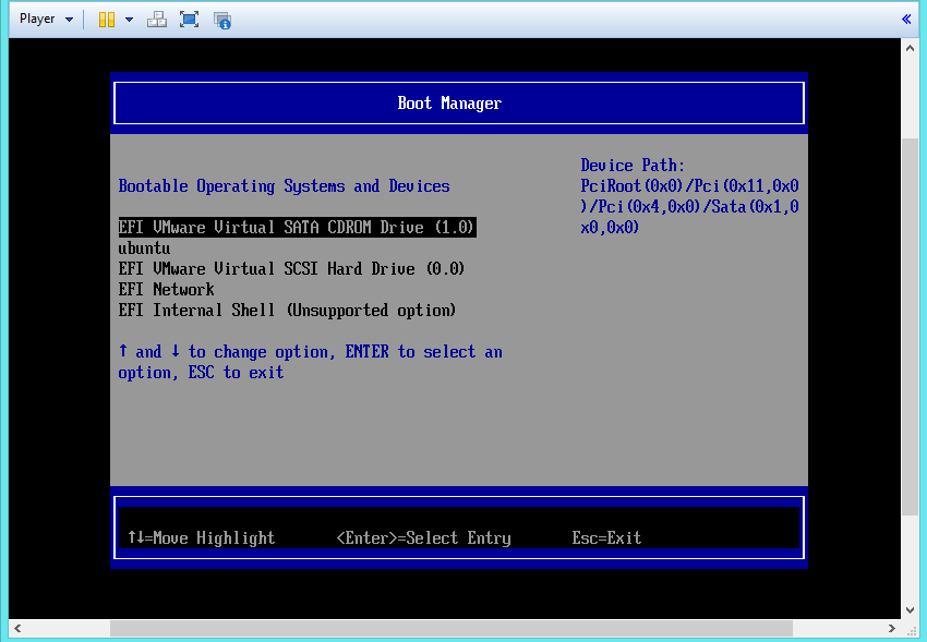VMware UEFI boot manager