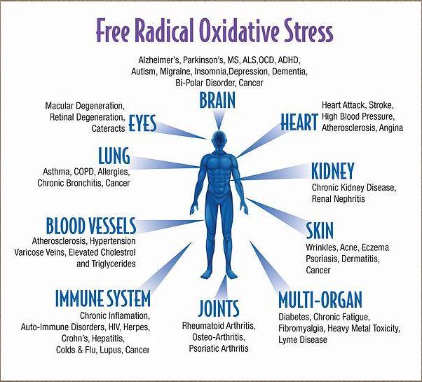 free radical disease에 대한 이미지 검색결과