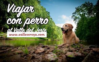 Viajar con perro al Valle del Jerte. Alojamientos para perros en el Valle del Jerte