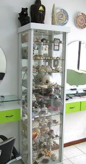 Estante de vidro para guardar coleções
