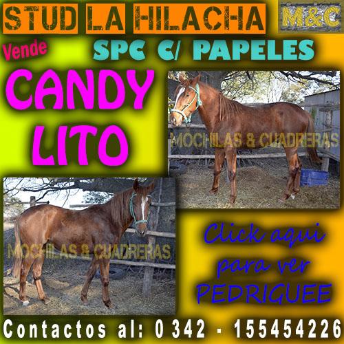 SLH - CANDY LITO