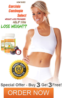 Food for fat loss bodybuilding