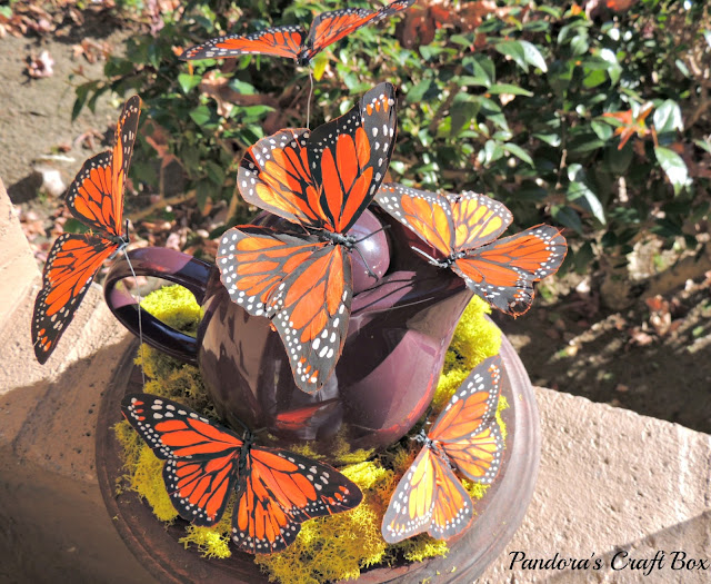 real butterfly, butterflies, glass dome, butterfly art, butterflies art, butterfly collection, butterfly gifts, acrylic tube, moss, moth crystals, tea pot, michaels butterfly
