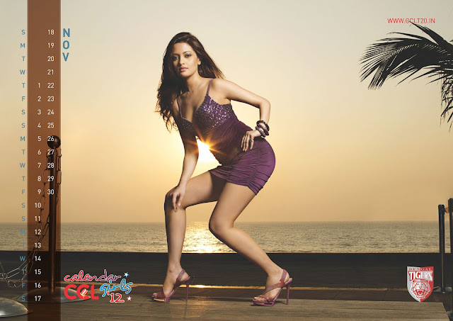 CCL Special Celebrity Calendar 2012 Part II