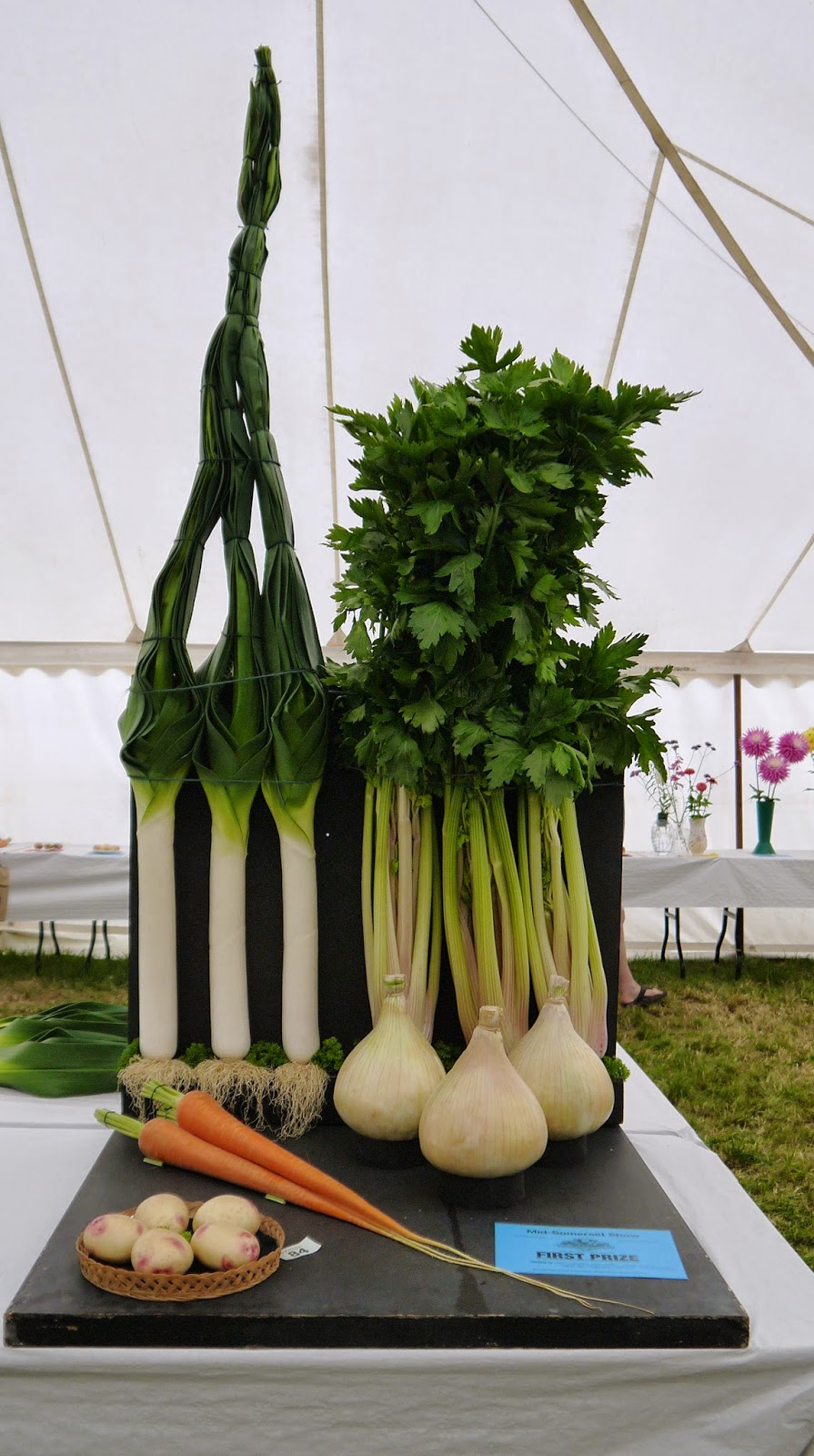 Mid Somerset Show Giant Vegetables