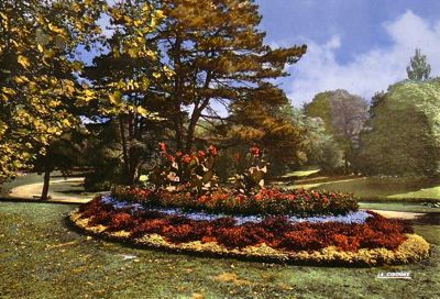 Les massifs de fleurs