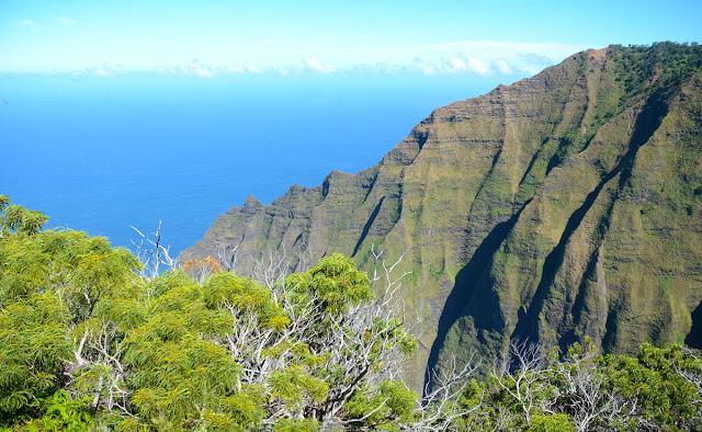 Na Pali Coast depuis Kokee State Park, Kauai, Hawaï, USA