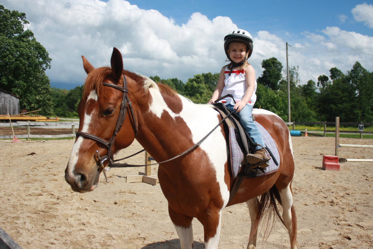horse riding lessons essay There are both differences and similarities between english and western riding  the most obvious difference is the tack the horse wears.