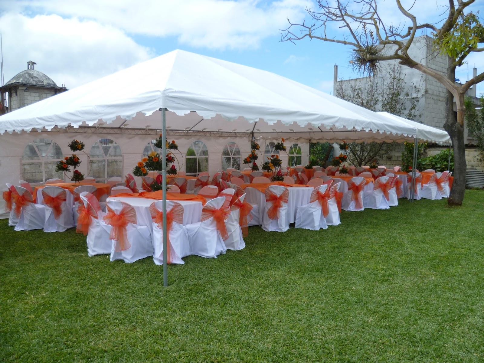 Fiestas decoraciones jaridn tulipanes - Decoraciones de jardin ...