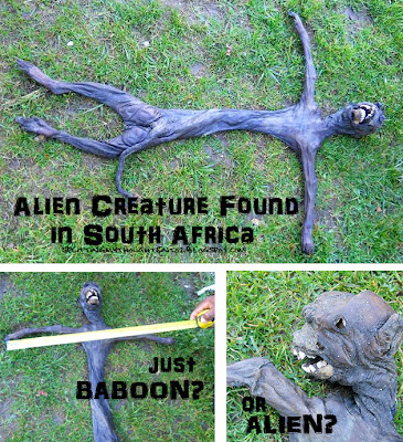 alien Mystery in South Africa