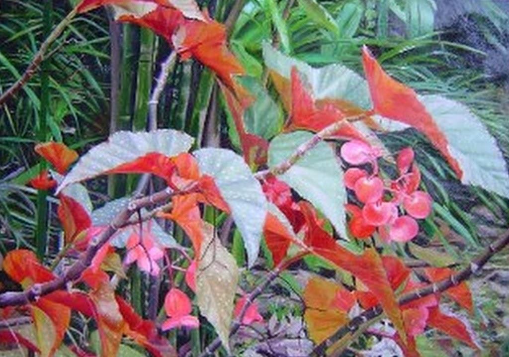 paisajes-con-flores-y-plantas