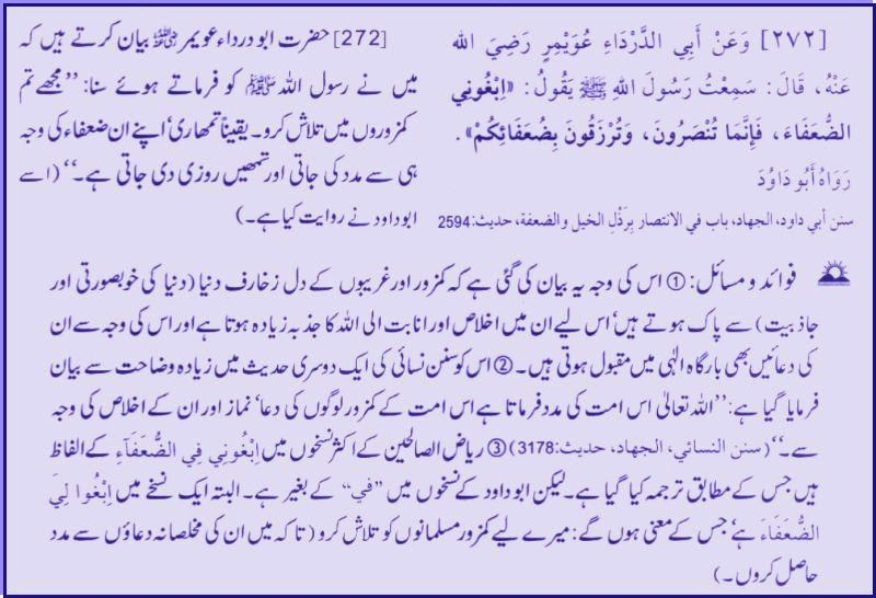 Daily Aayat, daily hadith, Daily Quran, Daily Quran And Hadith, Islamic Content, Islamic,