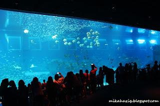 oceanarium singapore