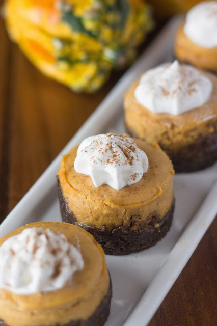 Pumpkin Cheesecake with Gingersnap Crust | Cooking on the Front Burner #pumpkincheesecake