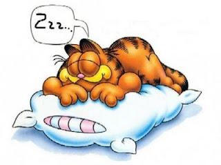 http://1.bp.blogspot.com/-fD67upY8Vgw/Tg8_1uJSNOI/AAAAAAAAAEE/dH_cv3MMOmc/s320/Dormir+Garfield.jpg