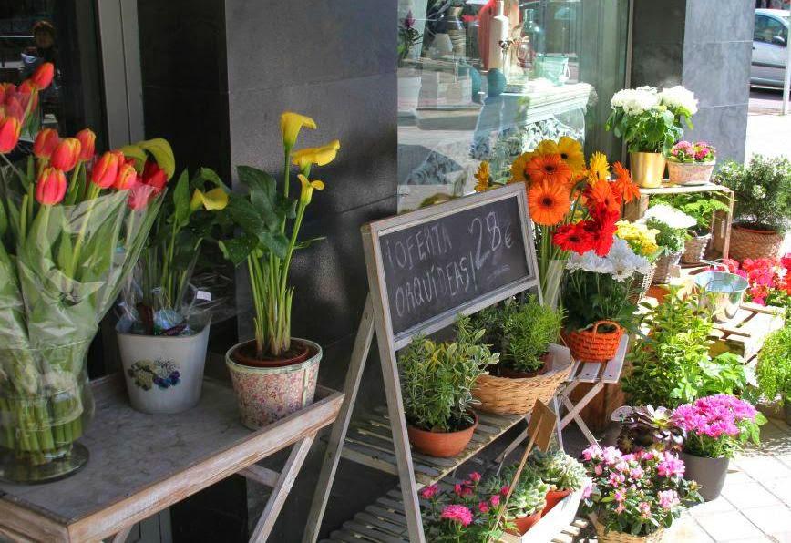 flores,floristería original,madrid,pink flower