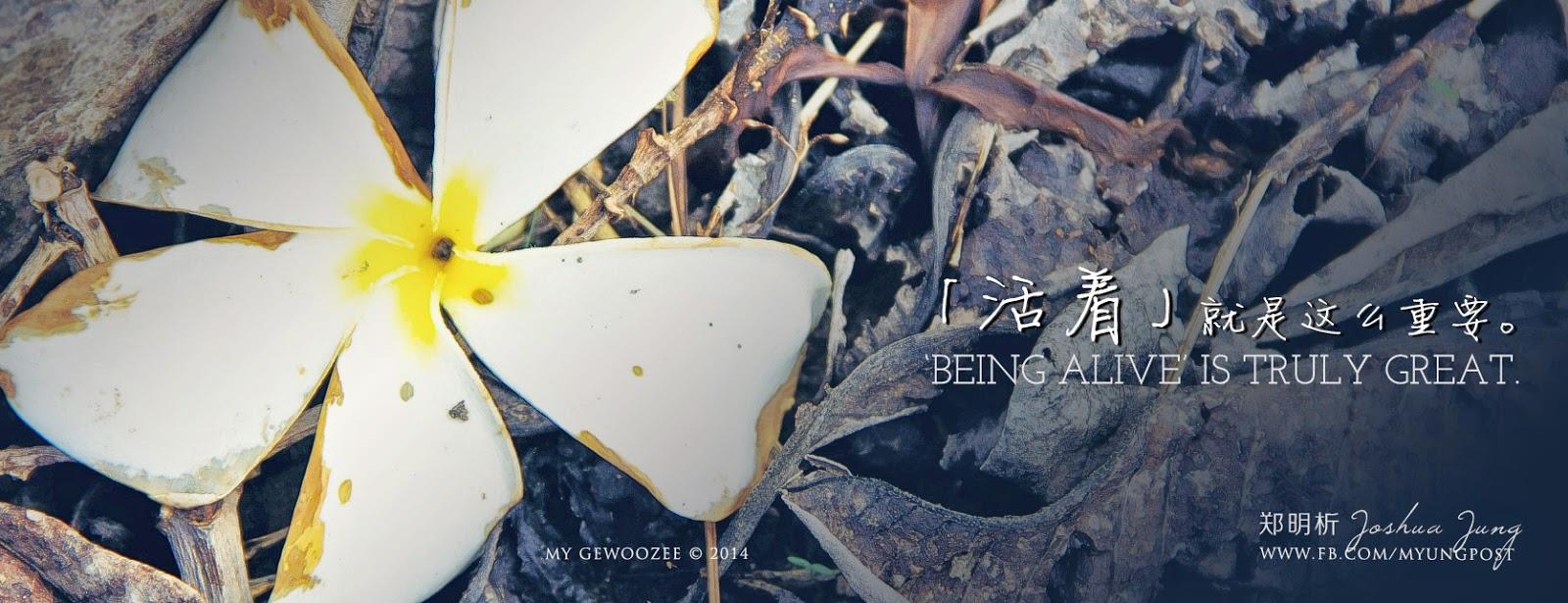 郑明析,摄理,月明洞,活着,Joshua Jung, Providence, Wolmyeong Dong, Alive