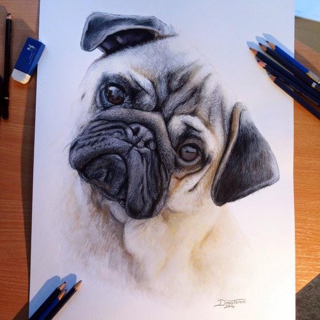 photorealistic pencil drawings