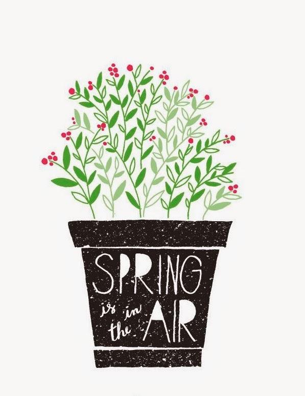 primavera-estacao-flores-vaso