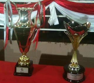 Piala Unity 2011