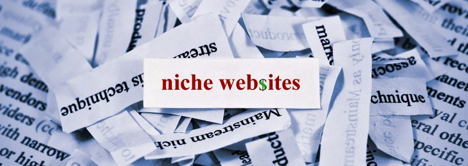 make money from home, niche website