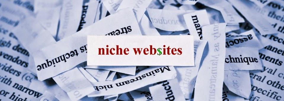 make money from home, niche website