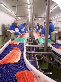 http://www.dailyrecord.co.uk/business/company-results-forecasts/profits-soar-duns-based-fish-processor-5440429