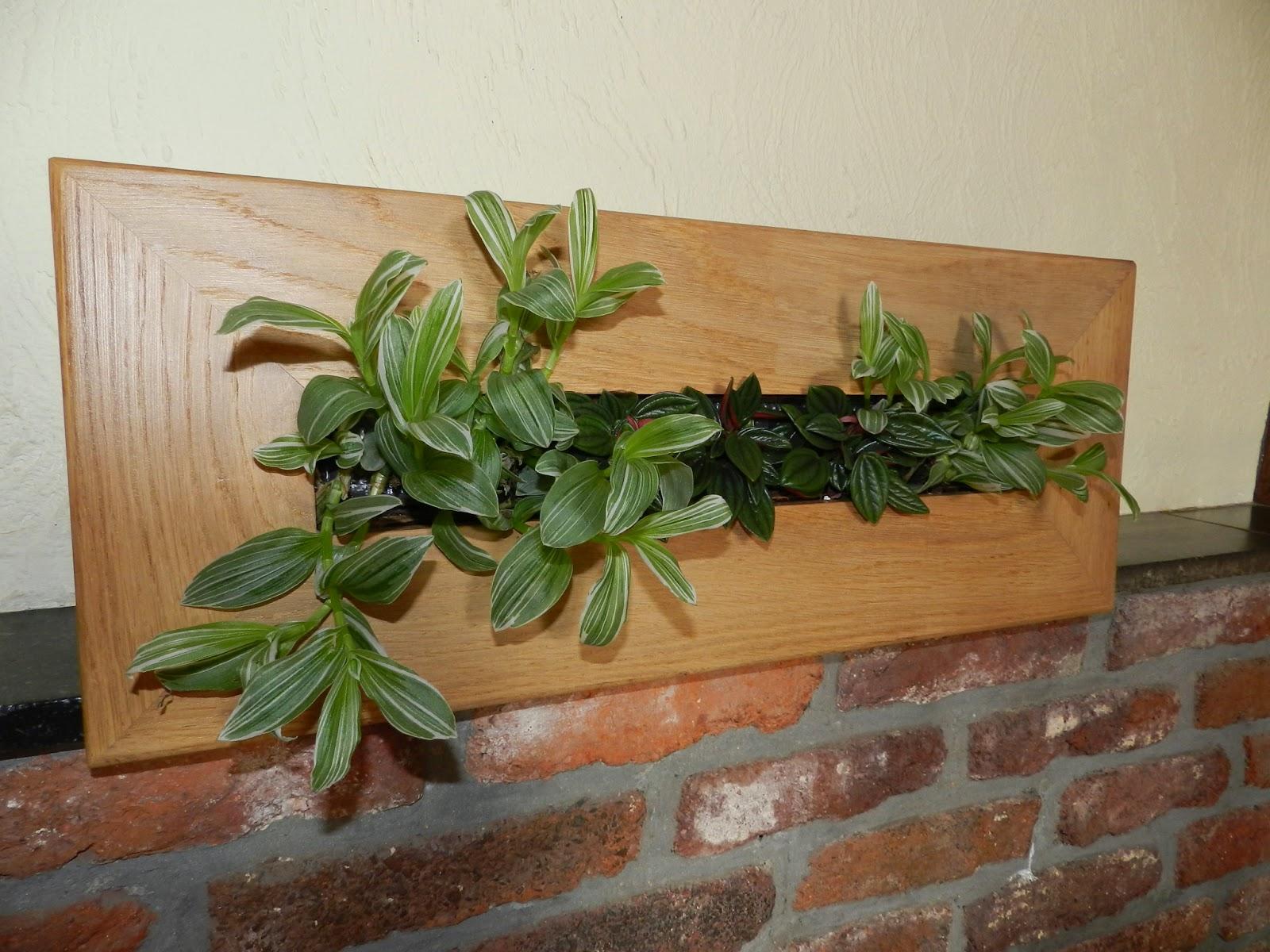 Ma maison au naturel: tableau végétal