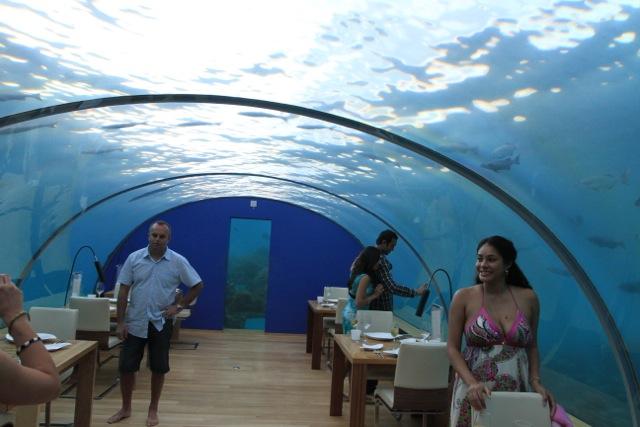 Conrad hotel in maldives underwater restaurant