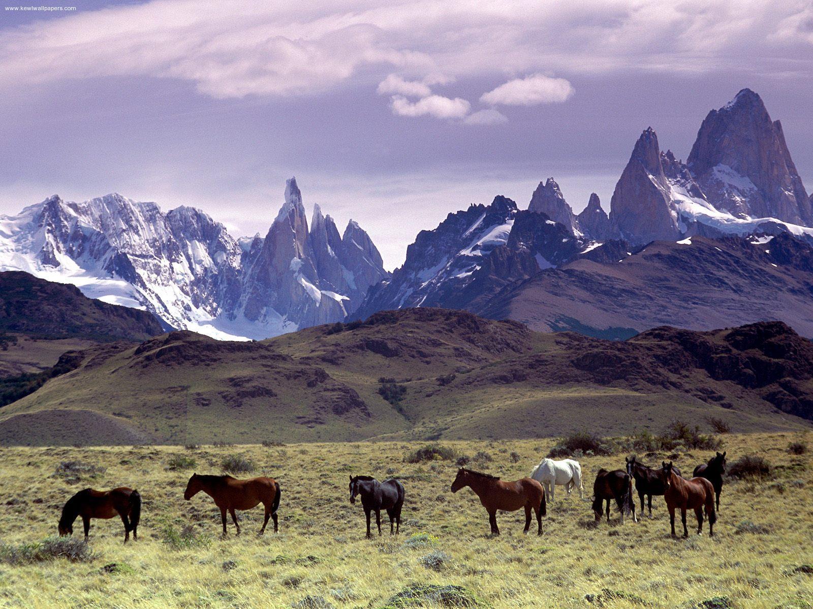 Mensajero del Rio: Tríptica nacional. Geografía. Patagonia 1