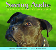 Audie's Journey on Facebook
