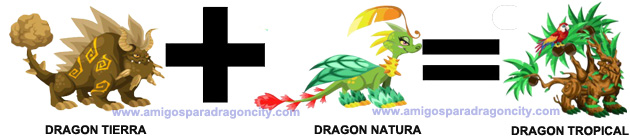 como sacar al dragon tropical en dragon city