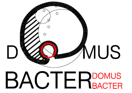 DOMUSBACTER