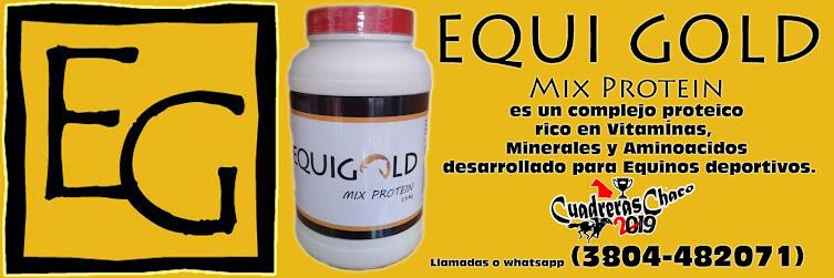 EQUI GOLDAÑO  2019