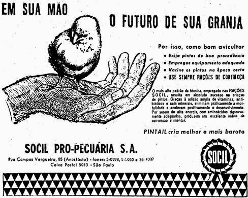 Propaganda da Socil para criação de pintos de qualidade. 1957.