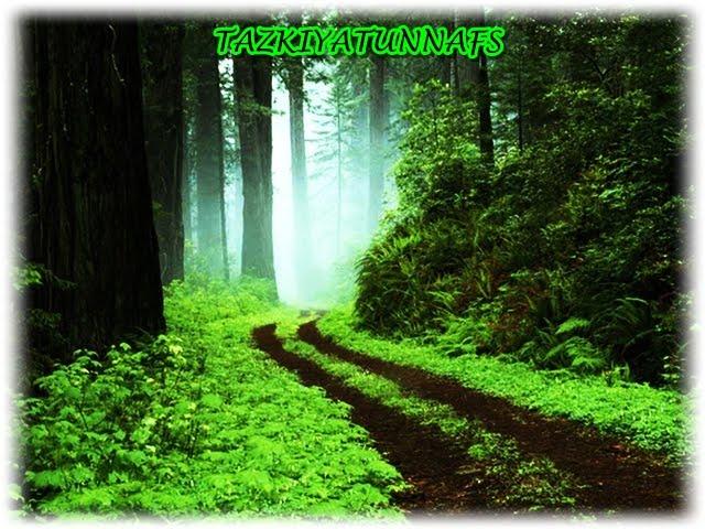 TAZKIYATUNNAFS