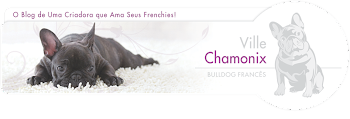 Blog Ville Chamonix