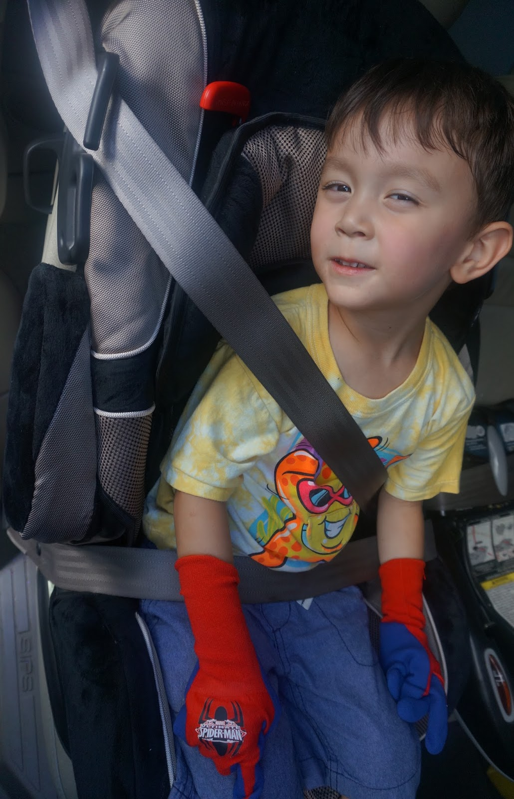 The Safety First Alpha Omega Elite Car Seat Features A Removable Cup Holder For Snacks Or Drinks With I Would Say Is Pretty Much Must Have When Going