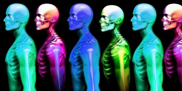 Dr. WTF Blog!: Un viaje dentro del cuerpo humano
