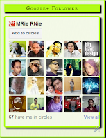 G+ Follower Widget