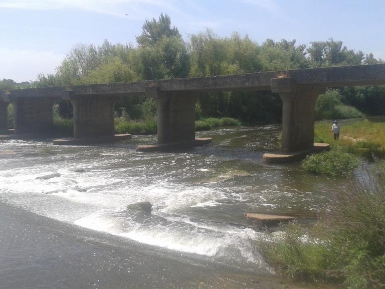 Ponte do Paço em Mora