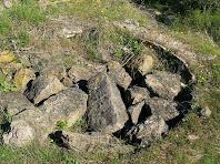 Una altra de les tines de Merola, aquesta coberta de pedres i de vegetació