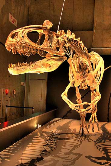 Most Amazing Extinct Arctic Animals South Polar Dinosaurs