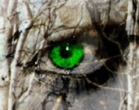 othello the green eyed monster The green-eyed monster refers to the popular saying which says a persons eyes turn green when filled with the feeling of jealousy one of the main themes in othello is jealousy, along with.