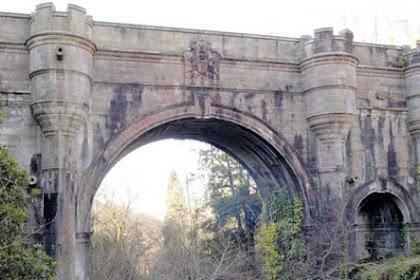 50 Anjing Mati Bunuh Diri di Jembatan Ini Gara-gara Hantu?