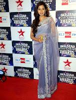 Bollywood and Tollywood singer Shreya, Ghoshal,Big Star Entertainment Awards 2012, hot sexy, sizzling, saree,